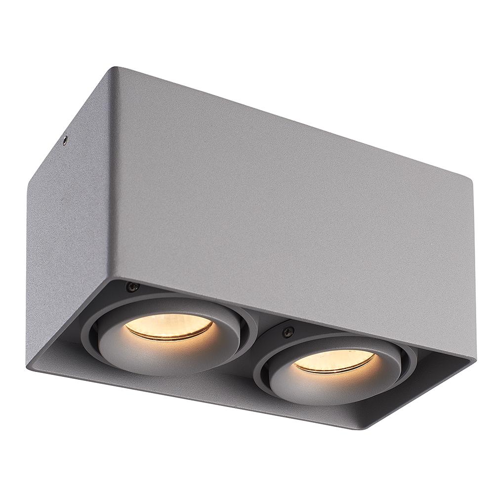 LED PLAFONDLAMP ESTO 2-LICHTS GRIJS IP20