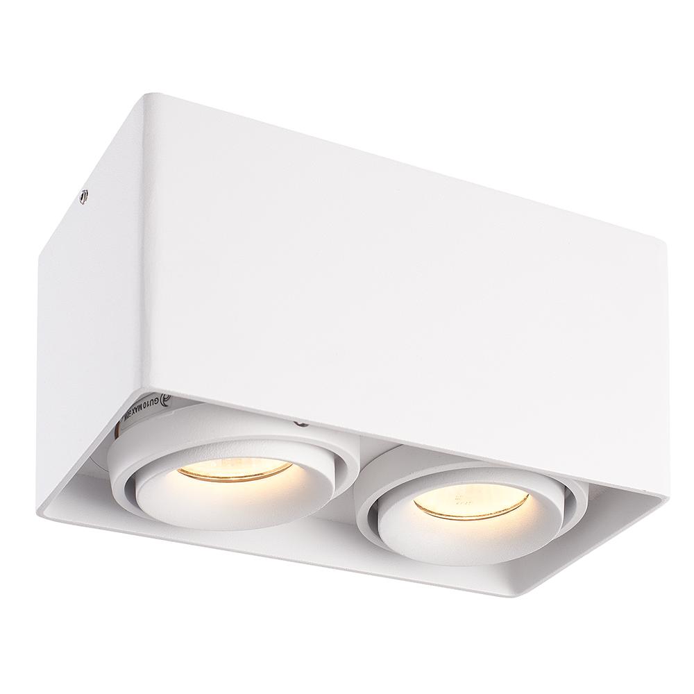 LED PLAFONDLAMP ESTO 2-LICHTS WIT IP20