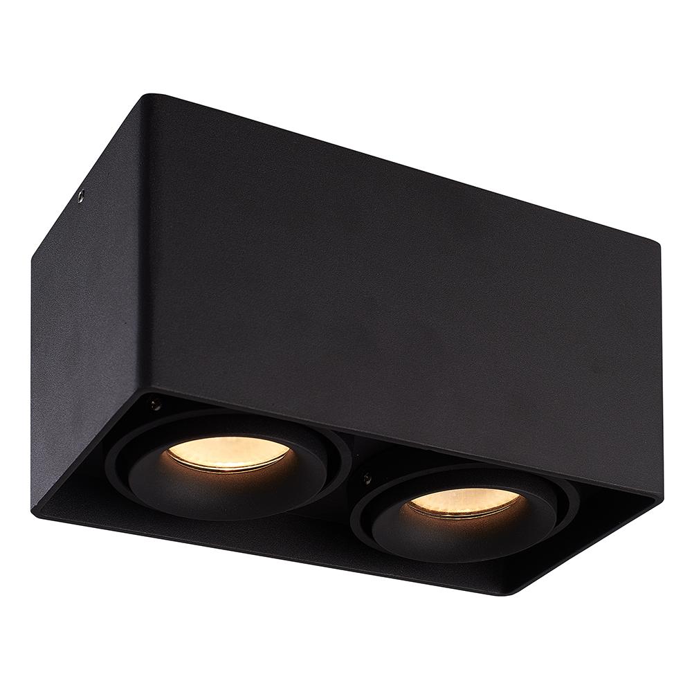 LED PLAFONDLAMP ESTO 2-LICHTS ZWART IP20