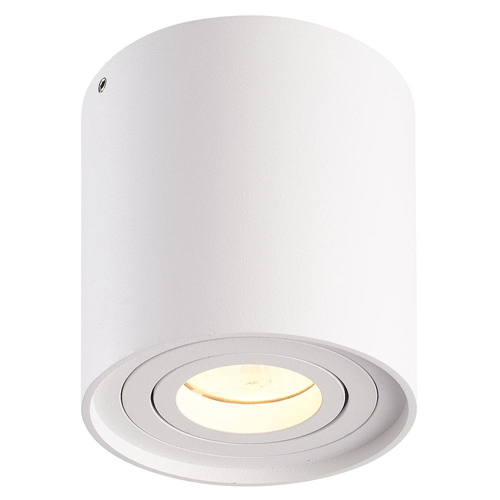 LED PLAFONDLAMP RAY WIT KANTELBAAR IP20